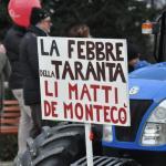 carnevale montecosaro 2015 (9)