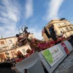Carnevale Monte San Giusto (38)